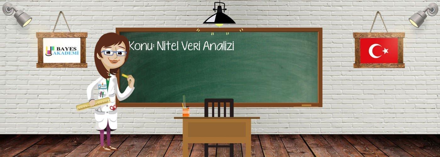 Nitel Veri Analizi Konusu