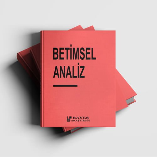 Betimsel Analiz